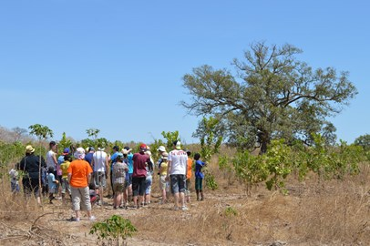 The Project Gambia group visit Sintet Farm