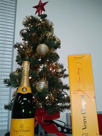 Champagne Christmas