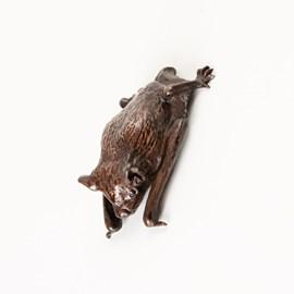Bronze pipistrelle bat