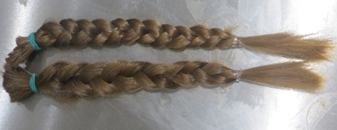 2 x Long plaits to donate to The Little Princess Trust