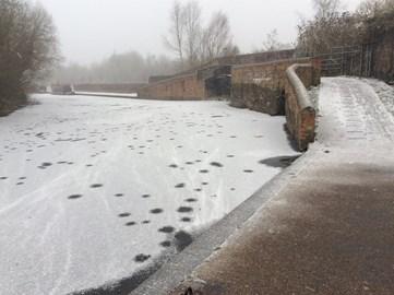 Stourbridge Canal 28 February
