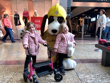 Daisy & twin sister Poppy with our FIDO