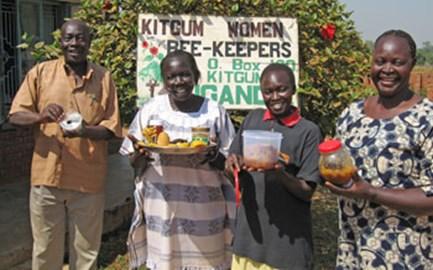 Beekeepers in Uganda building peace