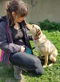 Me with Bonnie, Barking Mad Dog Rescue shelter, Romania