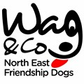 Wag & Company North East Friendship Dogs