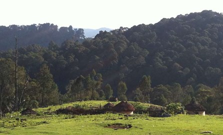 Embobut Forest: The ancestral lands of the Sengwer indigenous people