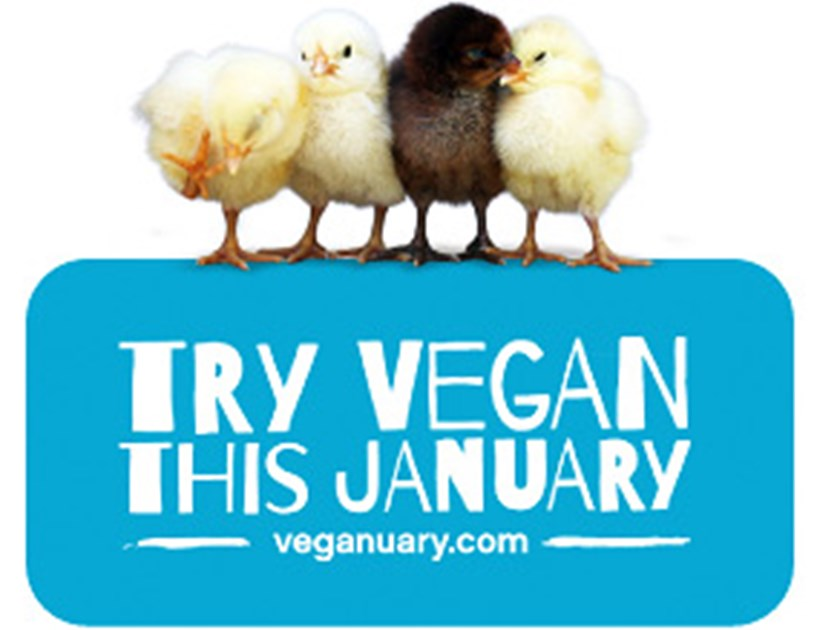 Image result for veganuary