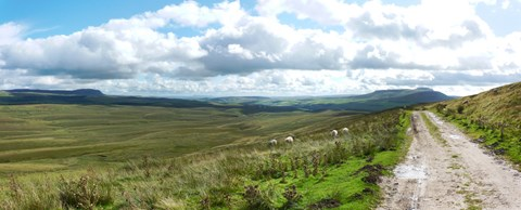 View along the Pennine Way