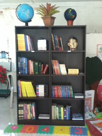 August: School has collected 300 books.