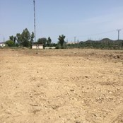 The land after it had been levelled.