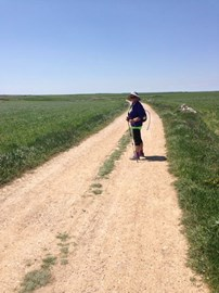 On the Camino path raising money for Dandelion Time ... Over 300 miles achieved!!
