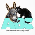 ABC Animal Sanctuary