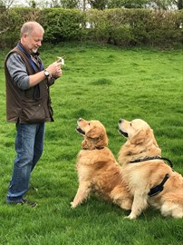 Dog whisperer... with help from biscuits