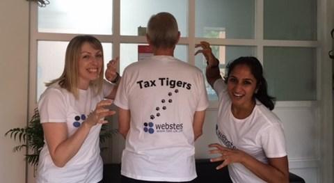 Tax Tigers