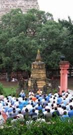 Dhammakranti retreatants meditating