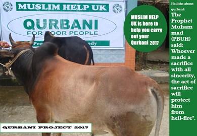 Qurbani 2016