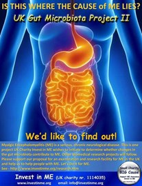Gut in ME Research Phase Two