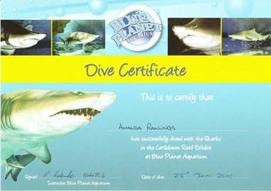 Mandi Certificate to prove I DID IT!