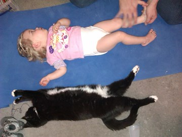 Doing stretches - with the cat helping!