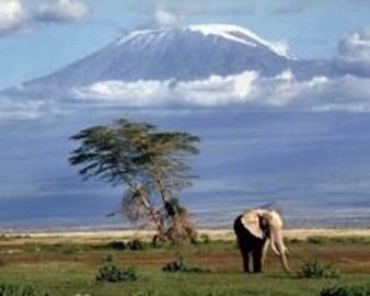 Mount Kilimanjaro - 19,340 feet high!