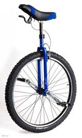 """29"""" unicycle"""