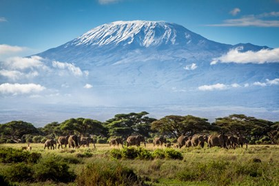 Kilimanjaro Trek in honour of Jayden's Memory