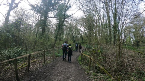 The Team navigating the Wider paths in the woods