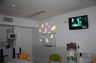 Butterflies Projected on the Walls