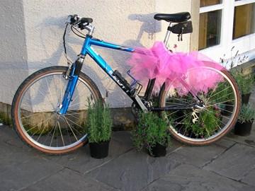 My bike Bernard wearing the Tutu!