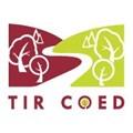 Tir Coed