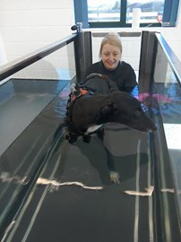 Frazer at Hydrotherapy with Dani