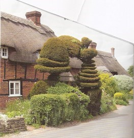 Old Basing Thatch