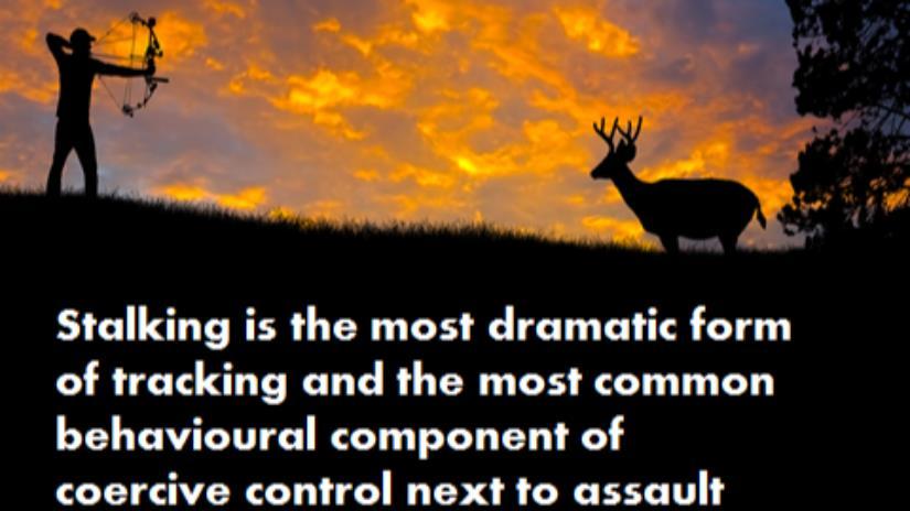 justgiving.com - Stalking Steals Lives and Takes Lives