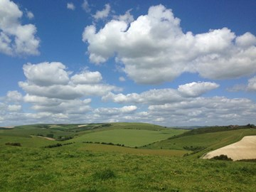 South Downs from Gorham Lane