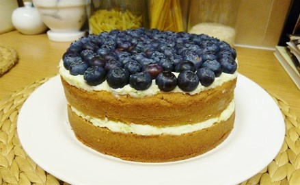 Blueberry Cheesecake Gateau