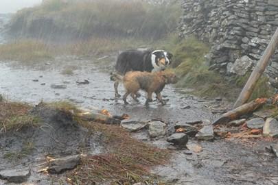 A 'bit of' rain